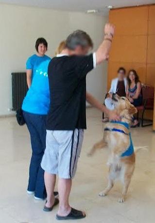 Terapia con perros realizada en Bétera.