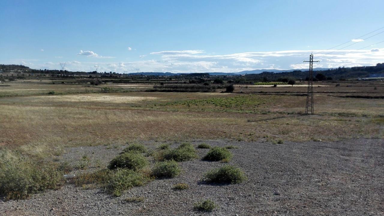Una imagen de los terrenos desbloqueados en el pleno de Cheste.