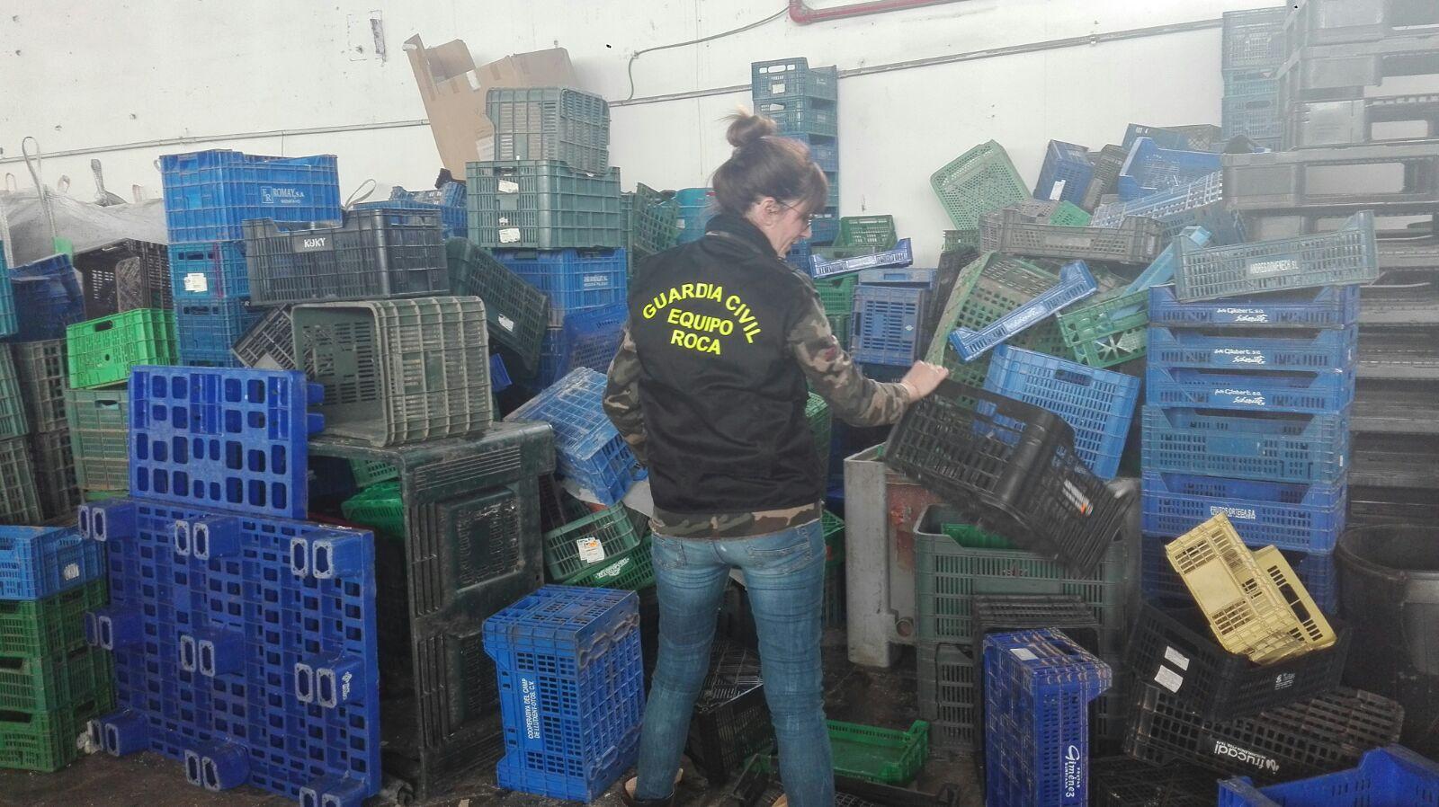 Los implicados sustrajeron 500 cajones de una cooperativa de Carlet valorados en 3.000 euros para venderlos en una chatarrería de reciclaje.