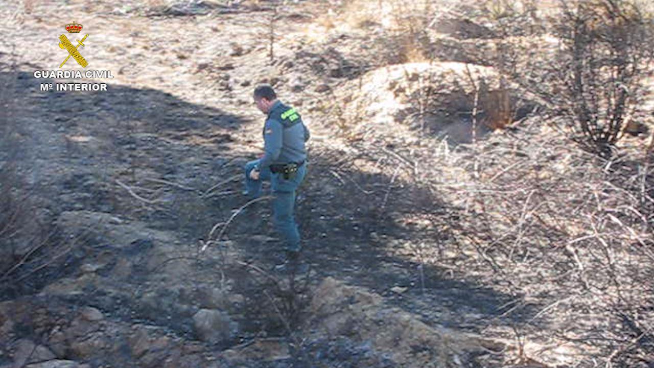 Esta operación ha contado con la colaboración de agentes del Seprona de la Guardia Civil de Benaguasil, de la Policía Local de Godelleta y Agentes Medioambientales de la Generalitat Valenciana.