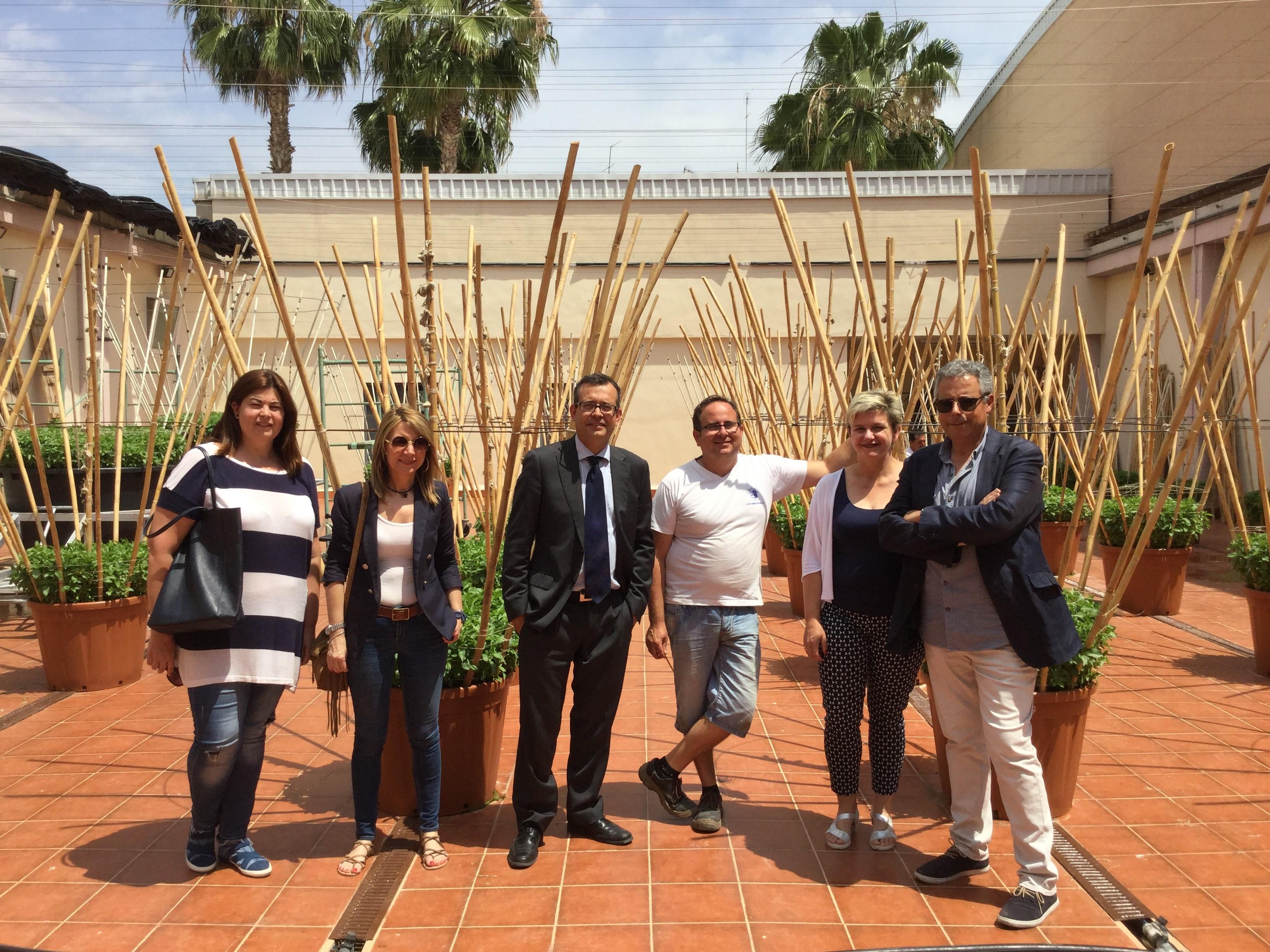Visita de responsables municipales y de la Diputación a l'Hort de les Alfàbegues.