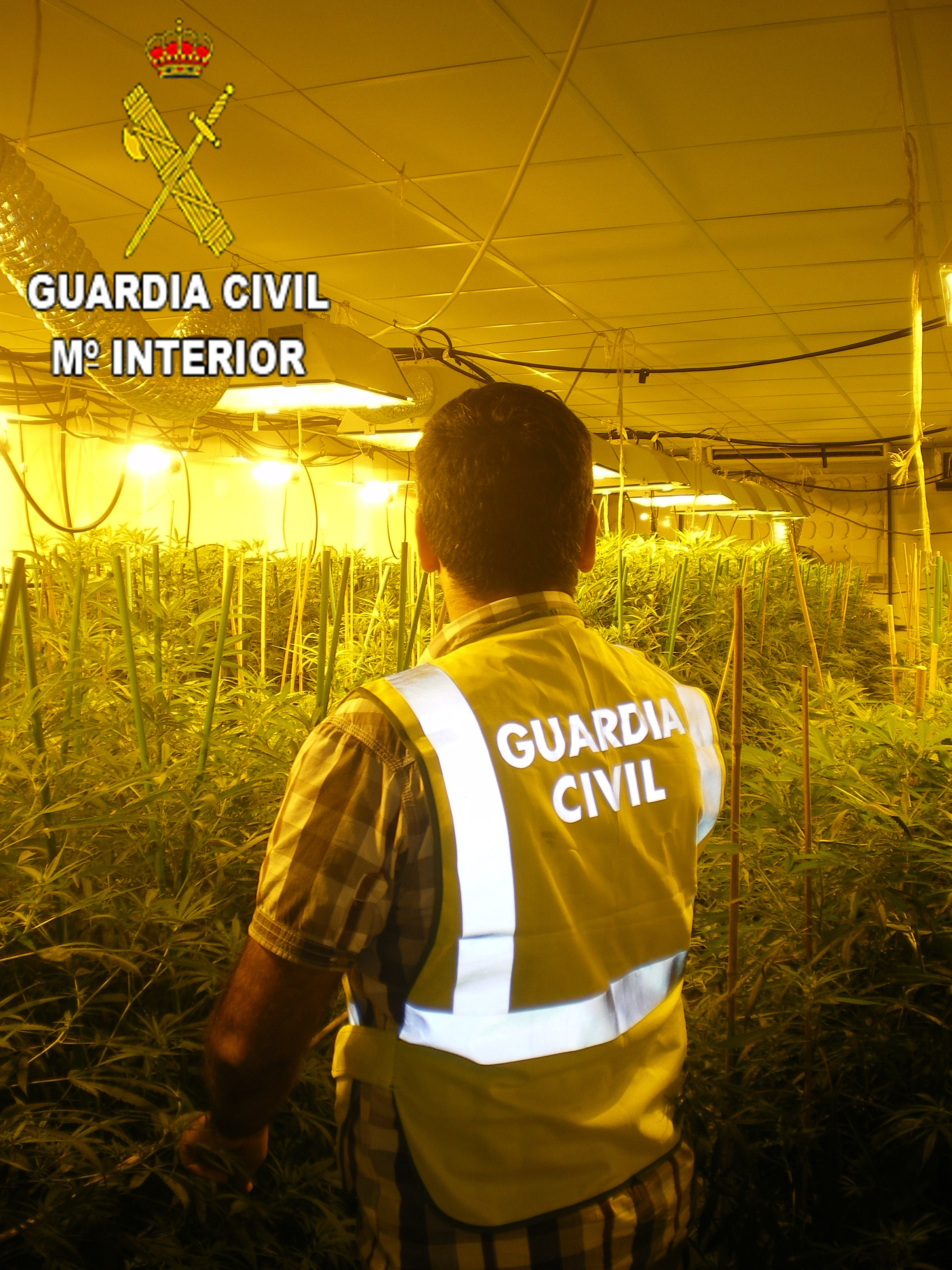 Una de las incautaciones llevadas a cabo por la Guardia Civil.