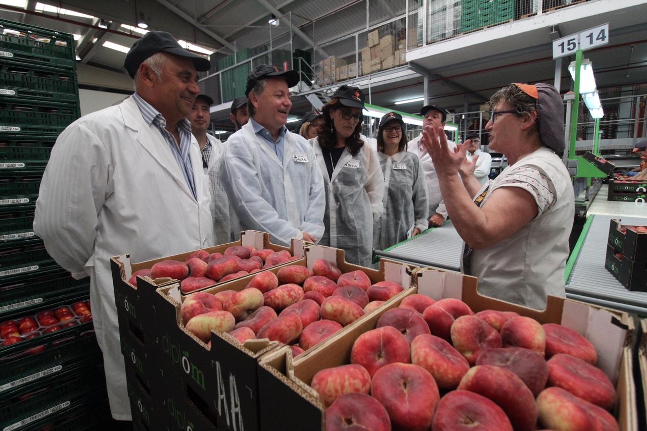 El delegado ha visitado una de las cooperativas más importantes de La Ribera que emplea a 1.500 personas.