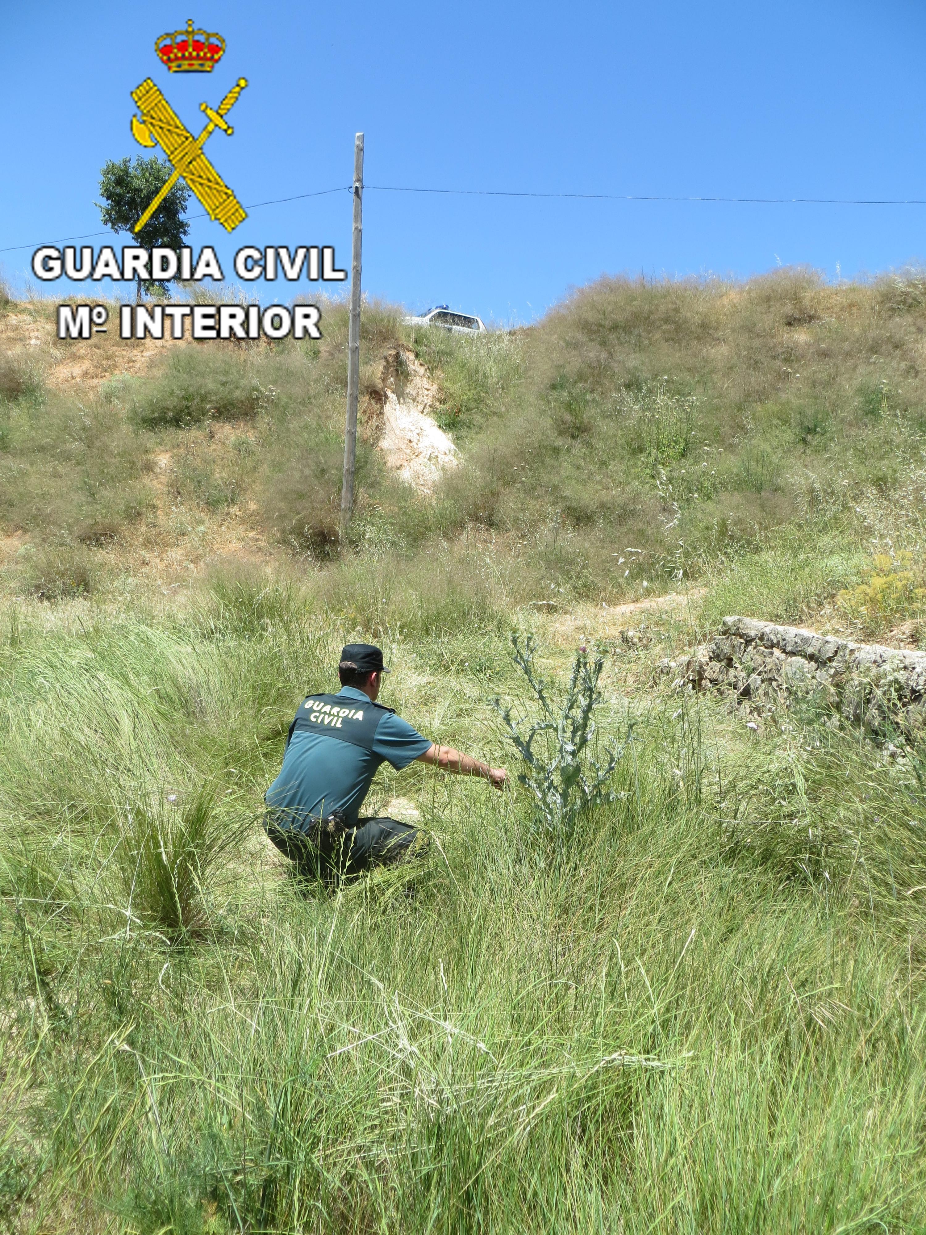 La Guardia Civil ha procedido al auxilio de un varón de 76 años, que se encontraba en una zona de difícil acceso y de compleja visualización en el termino municipal de Sinarcas.