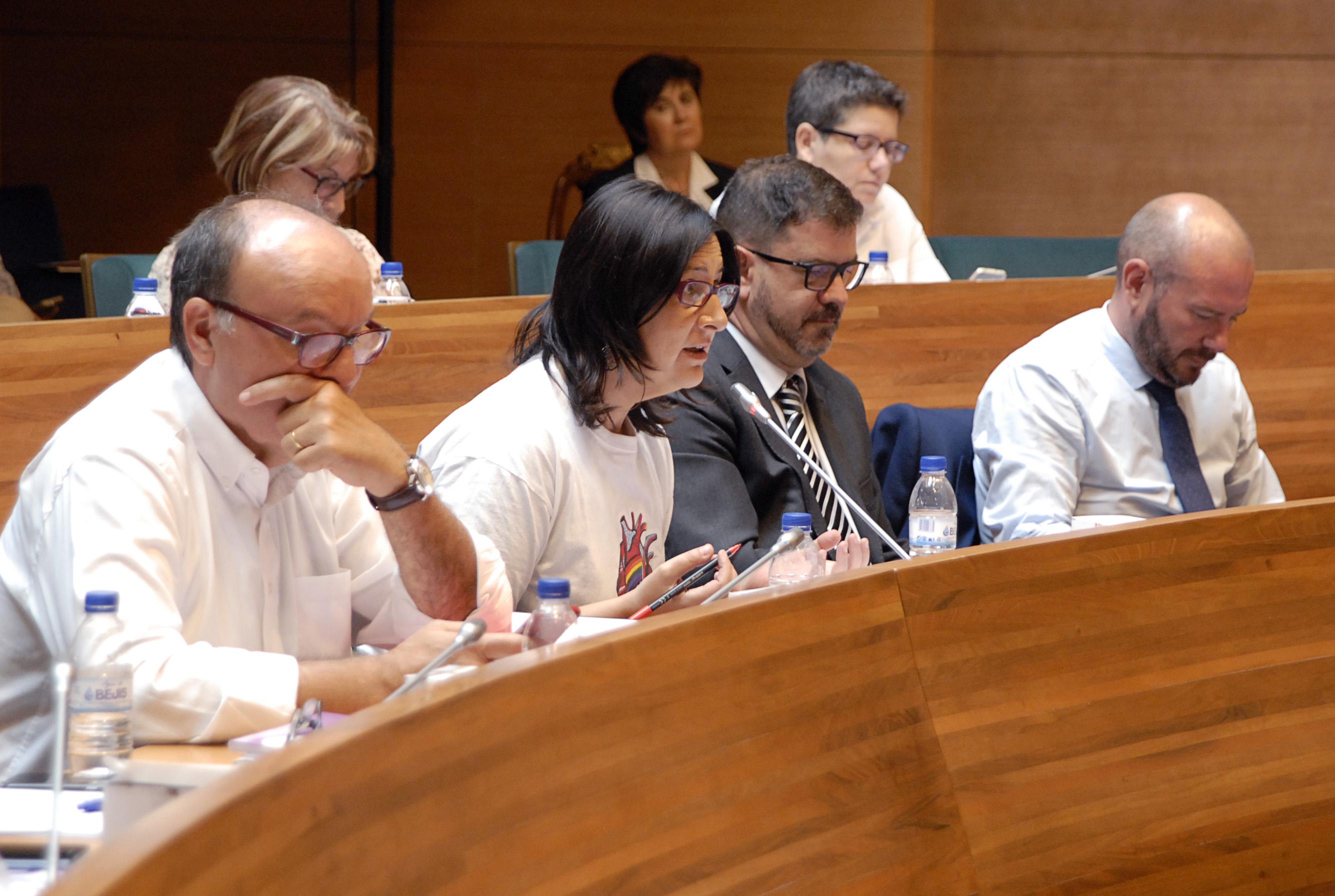 La diputada de Memòria Històrica, Rosa Pérez Garijo, durant el Ple celebrat a la Diputació de València.