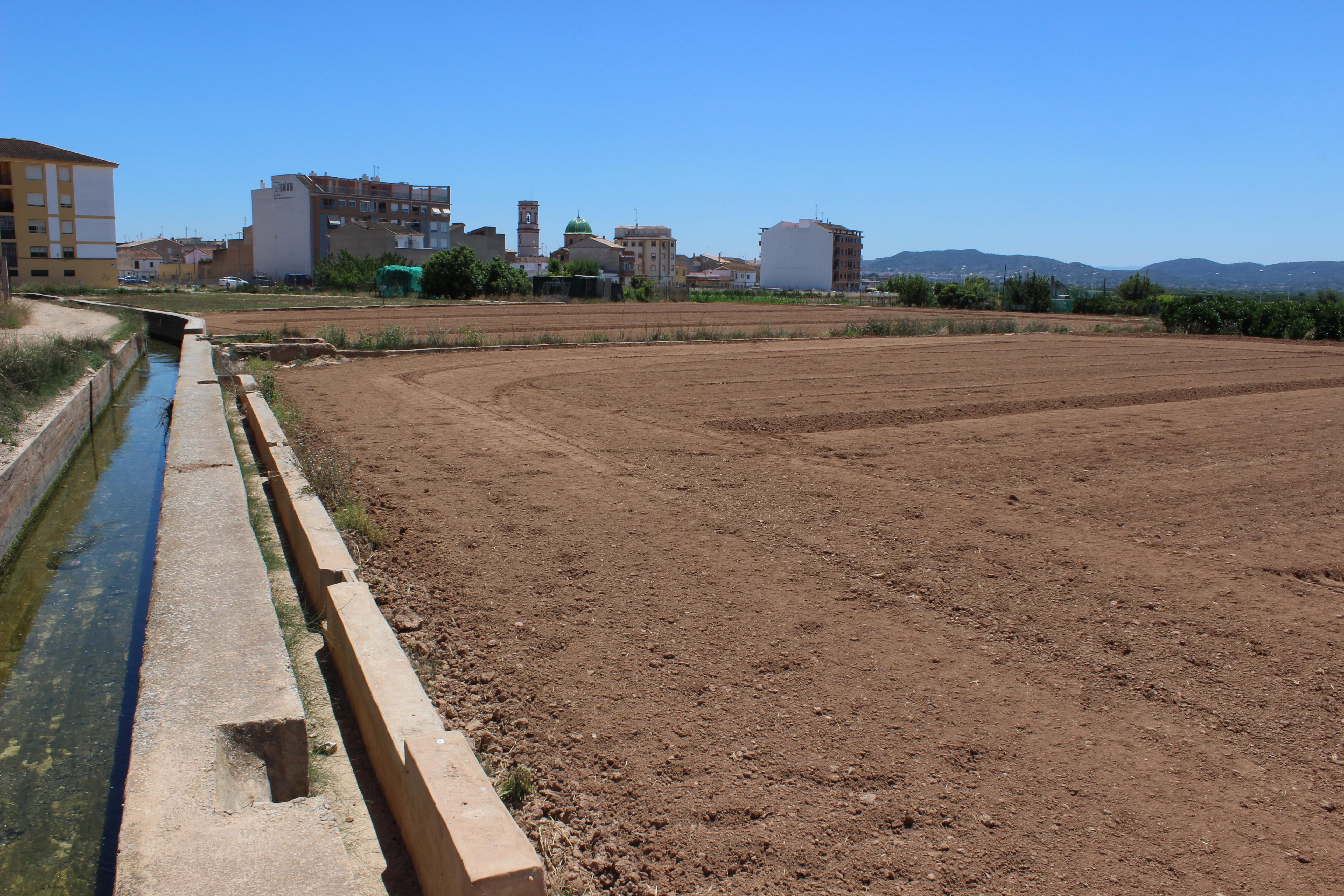 L'ordenança exigeix que els solars i terrenys estiguen nets dos vegades l'any.