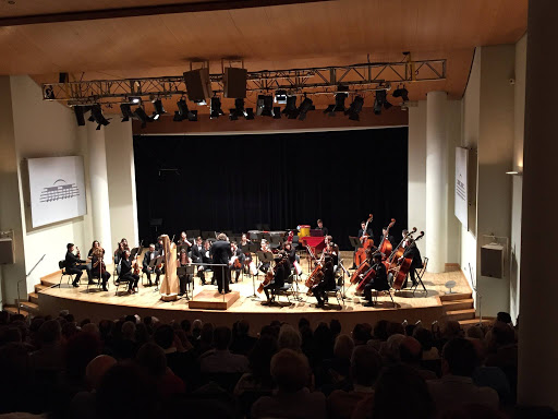 La Orquesta de La Artística en una reciente actuación en el Palau de la Música de Valencia.