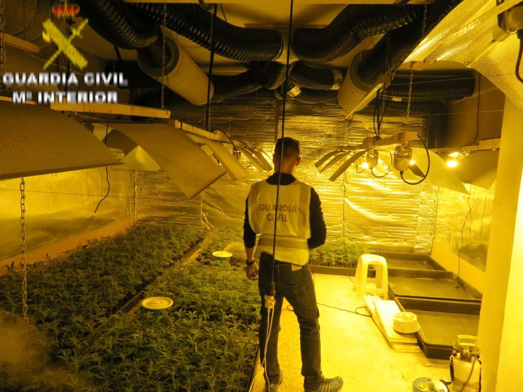 """La Guardia Civil en el marco de la operación """"DARDANELO"""" ha procedido a la detención de un varón implicado en el cultivo y elaboración de drogas."""