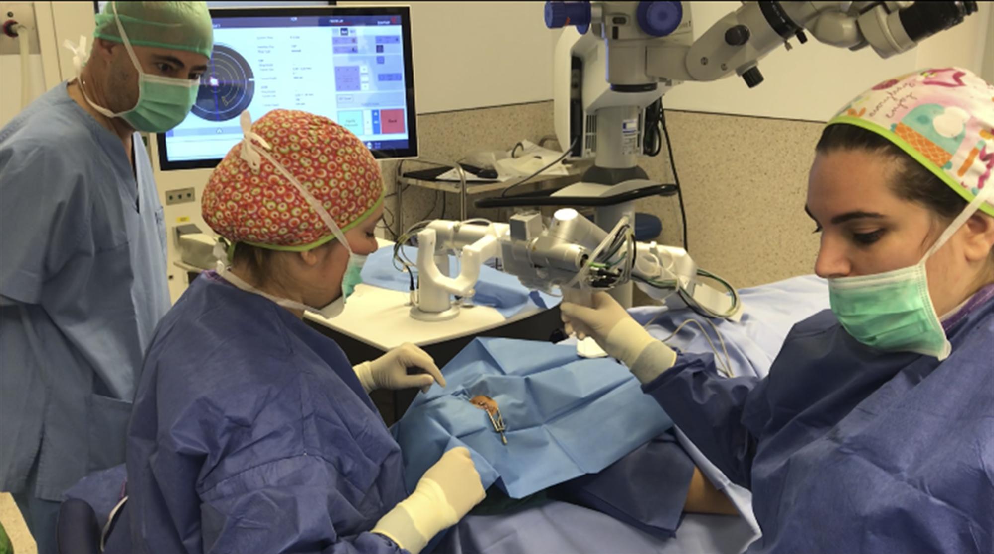 La cirugía de anillos intracorneales llevada a cabo por el equipo de oftalmólogos del Hospital de Manises consiste en una intervención ambulatoria que se realiza mediante láser.