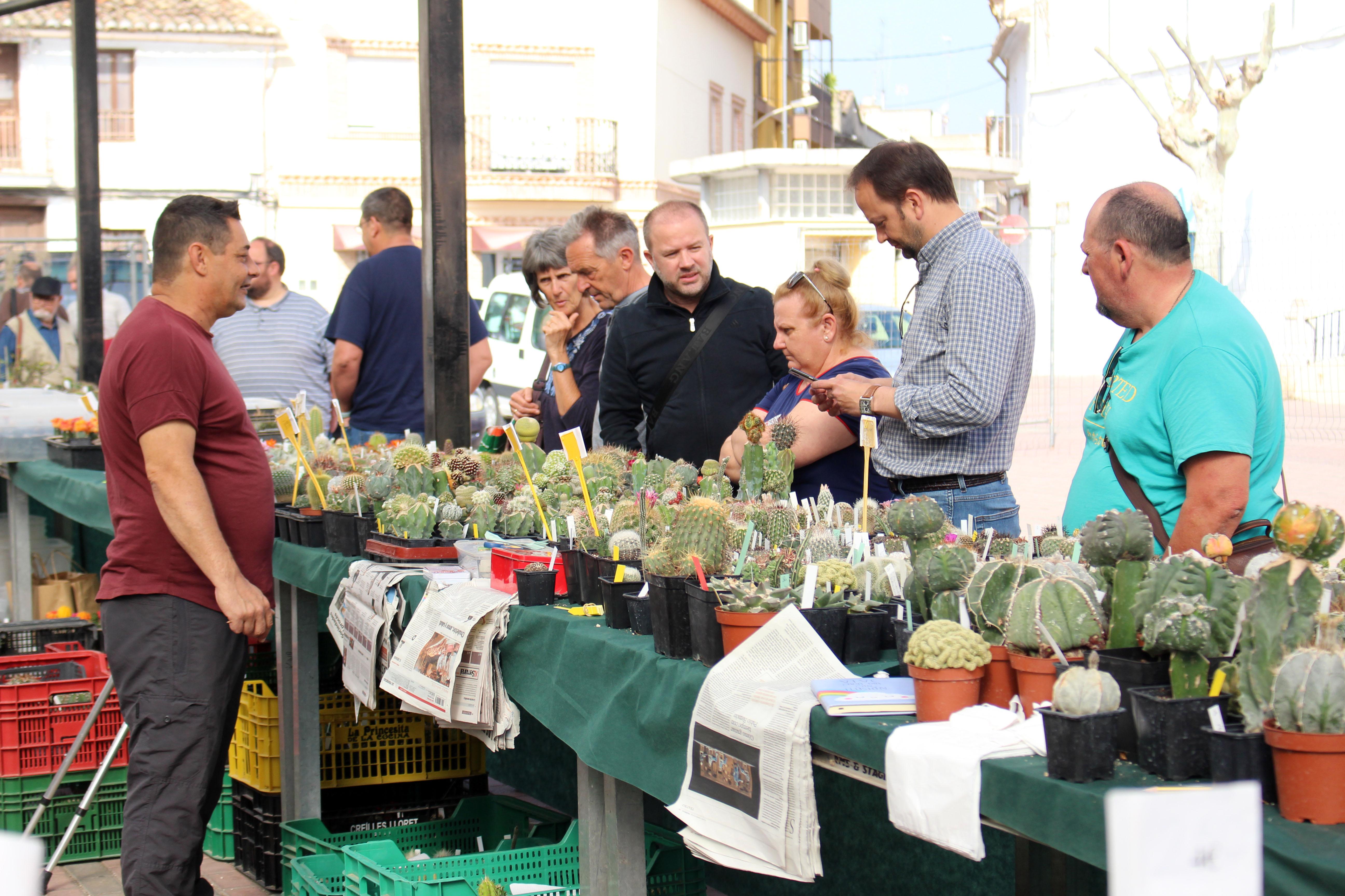 El Congreso Internacional de Cactus y Suculentas de Cheste ya está consolidado como uno de los más atractivos.
