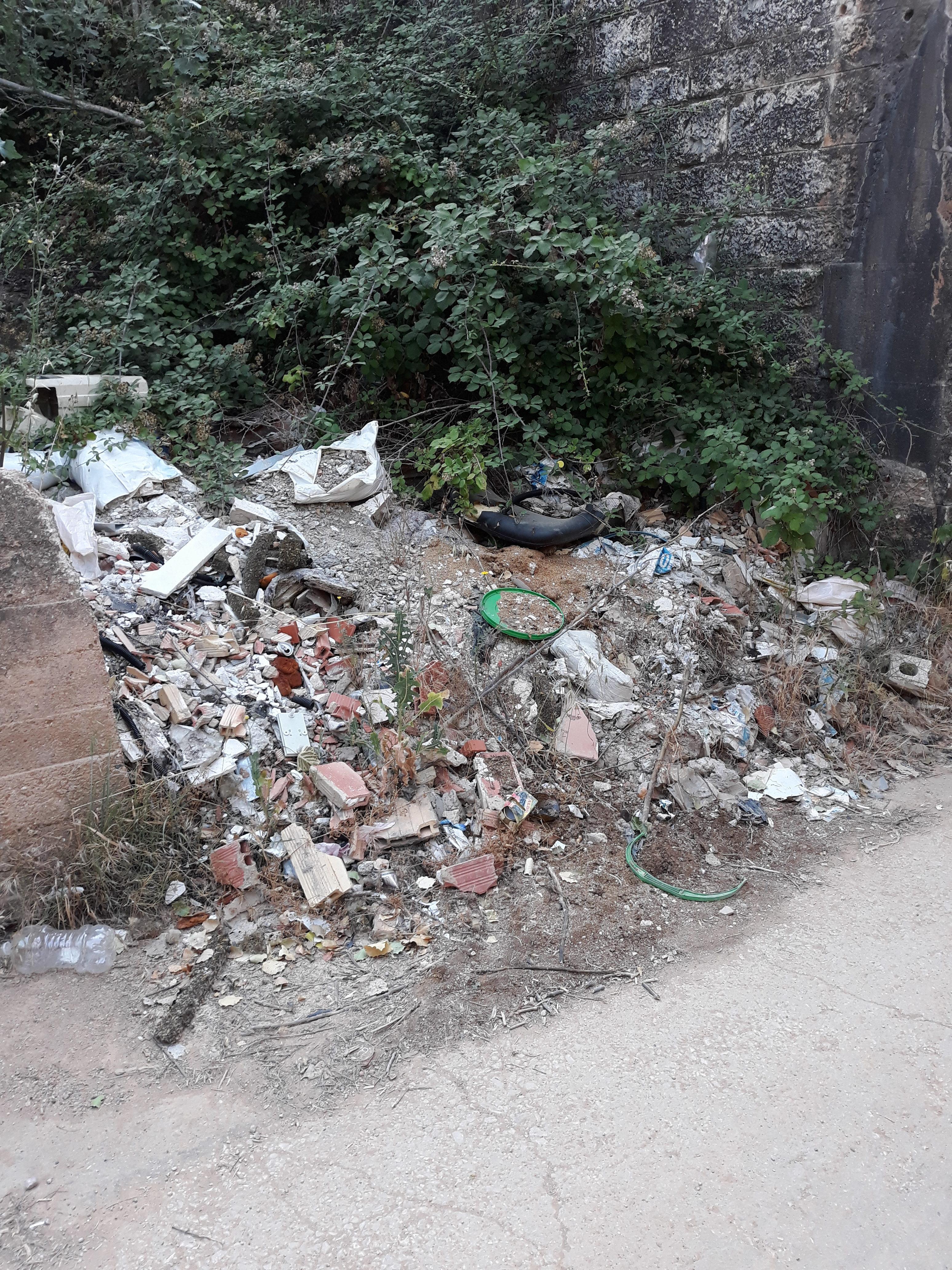 Desde el año pasado se tiene como objetivo la limpieza de zonas críticas y la mejora de espacios degradados.