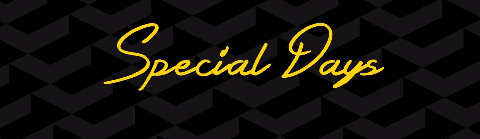 https://specialdays-renault.promo-dealer.com/