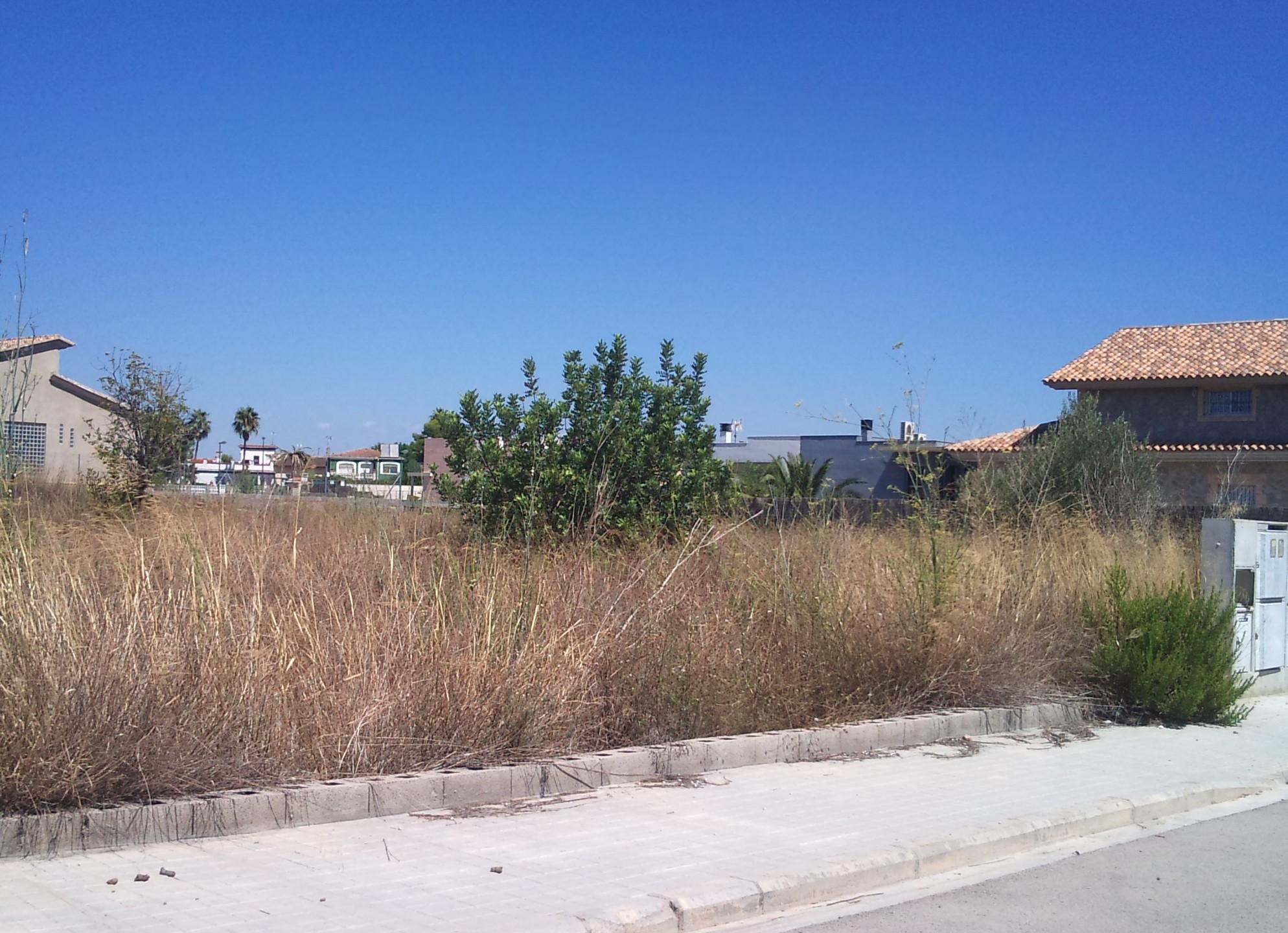 El 25% de los dueños de parcelas sucias en Riba-roja las limpia para evitar multas de hasta 3.000 euros que prevé la ordenanza.