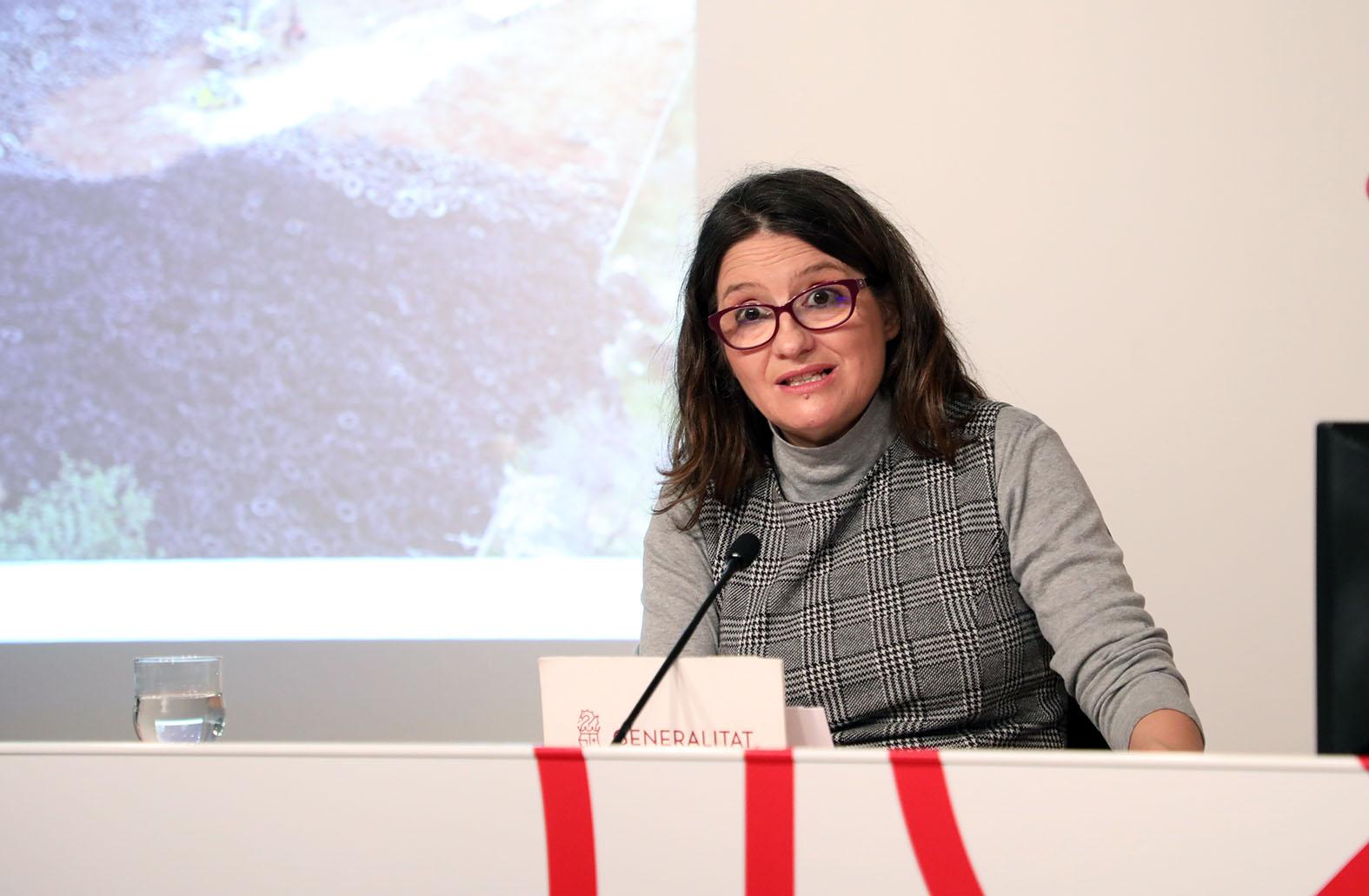 """La vicepresidenta del Consell asegura que los neumáticos se trasladarán a """"empresas gestoras de residuos para su reciclaje""""."""