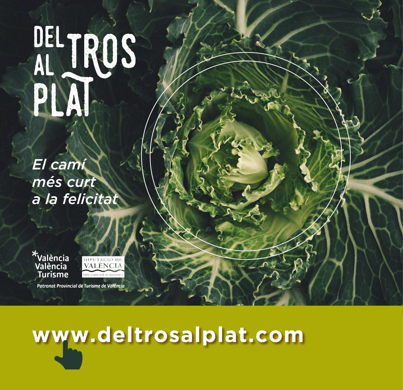 www.deltrosalplat.com
