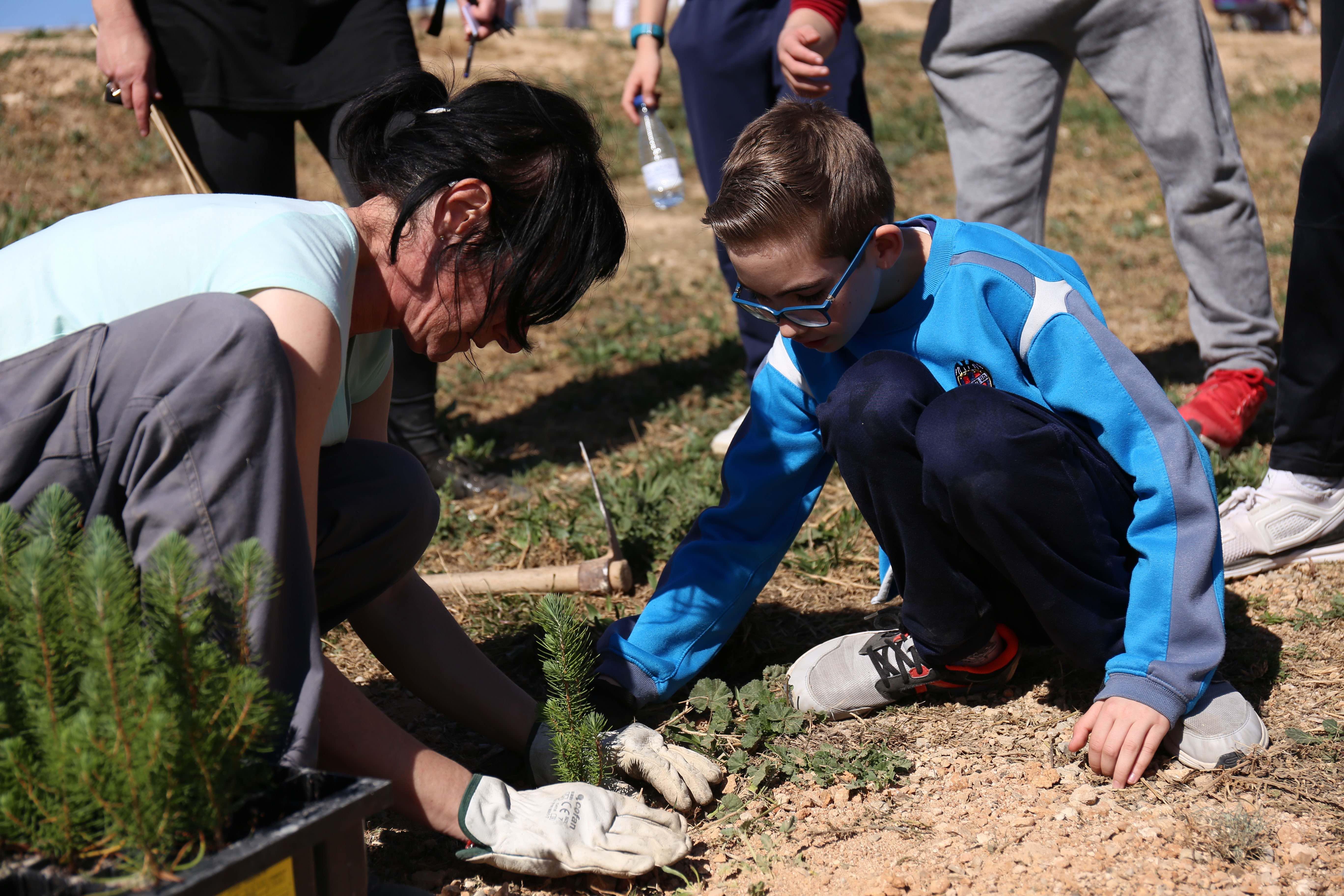 Los centros educativos celebran el Día del Árbol en Cheste.