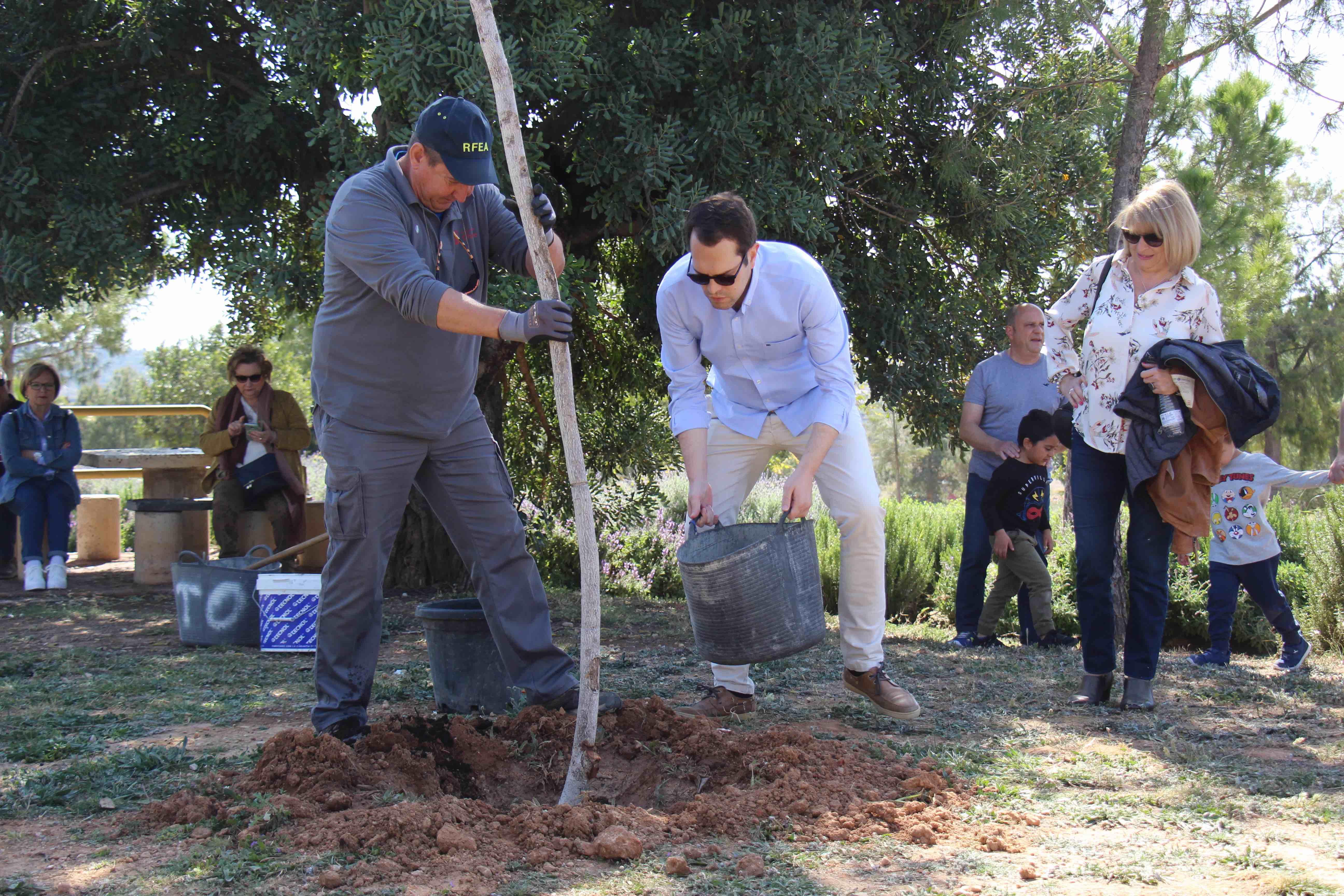 El alcalde, José Morell, plantando un árbol.