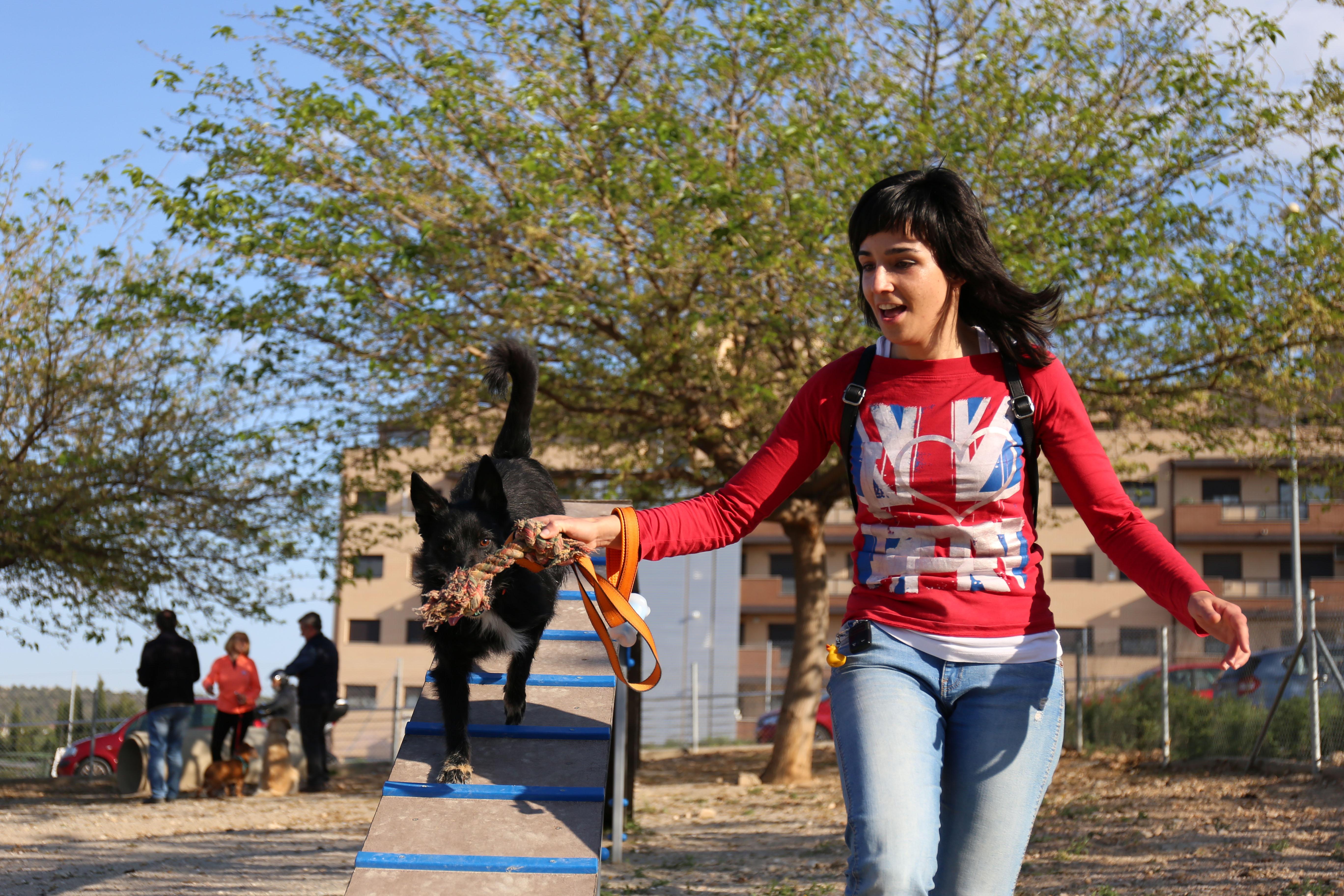 Cheste acogió tres jornadas de bienestar animal y educación canina impartidas por PRODA.