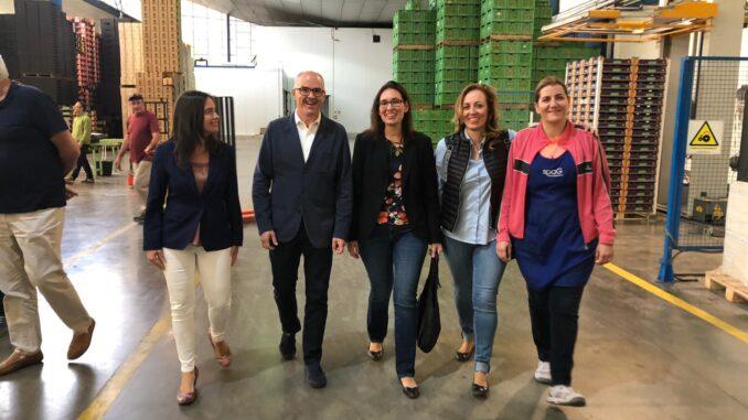 Belén Hoyo y Fernando de Rosa han visitado en compañía de Silvia López las instalaciones de la cooperativa agrícola y de la vinícola.