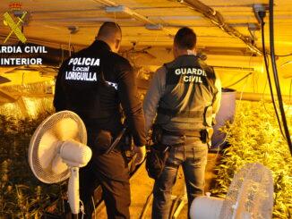 Con esta operación se han incautado 450 plantas de marihuana con un valor en el mercado de alrededor de 93.000 euros.