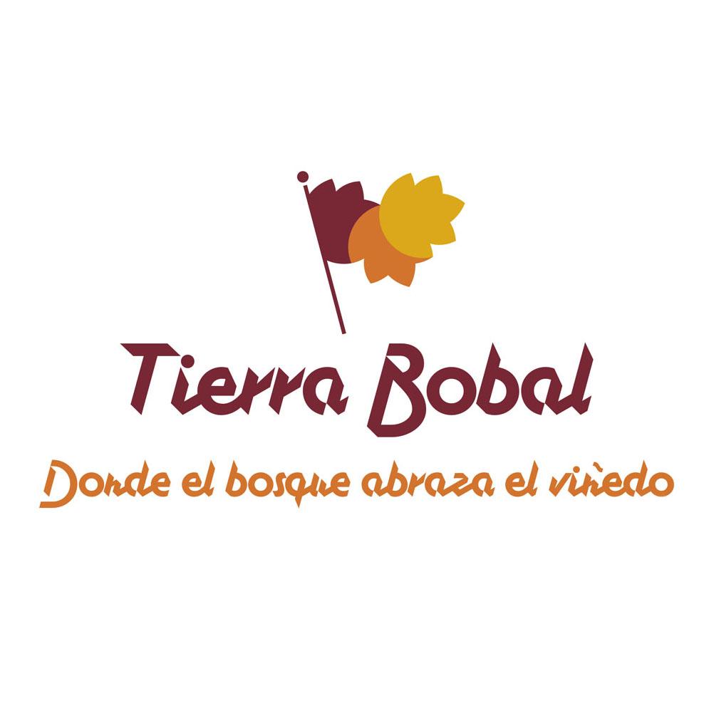 logo-TierraBobal